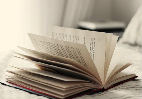 un libro aperto con le sue pagine
