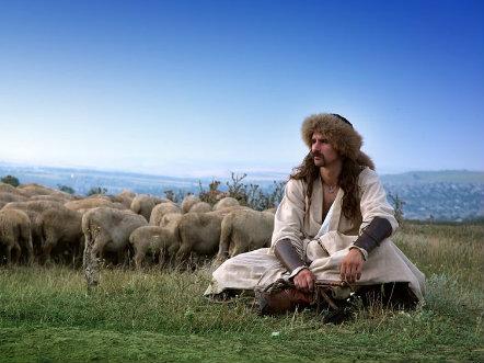 gregge insieme al pastore